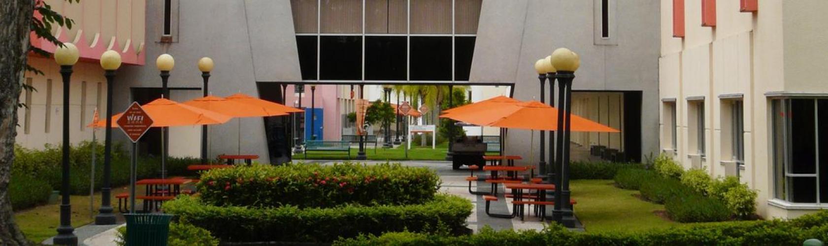 Campus principal UT